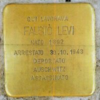 PI-Levi-Fausto