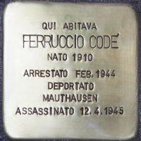 pi-Ferruccio-Code
