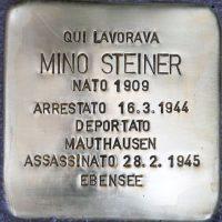 pi-Mino-Steiner